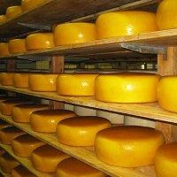 Троицкий административный округ комплекс по производству сыра