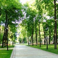Три мегапарка планируется построить в Троицком округе на границе с Калужской областью